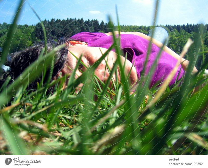 Awake in the wilderness Mensch Frau Himmel blau grün Baum Sommer schwarz Gesicht Erholung Wiese Gras Haare & Frisuren liegen Freizeit & Hobby schlafen
