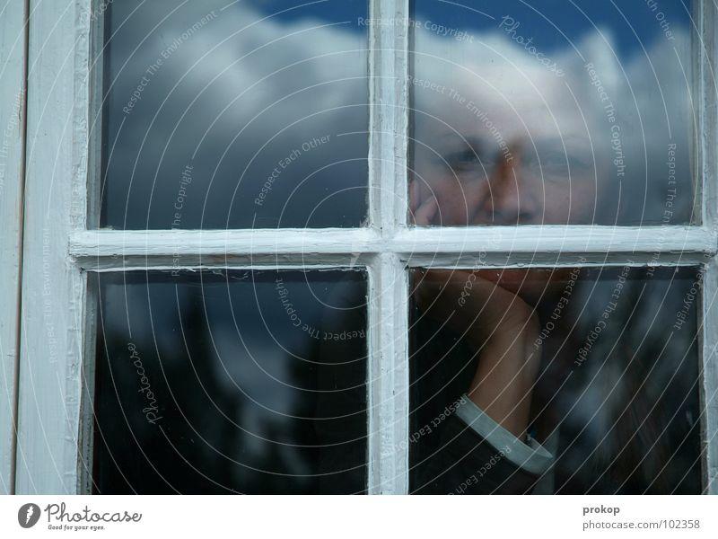 Es ist. Bewölkt. Frau Mädchen Fenster Holz Wolken Baum Tanne Nadelbaum Porträt Hand schön attraktiv gefangen durchsichtig Denken verloren Sehnsucht Einsamkeit
