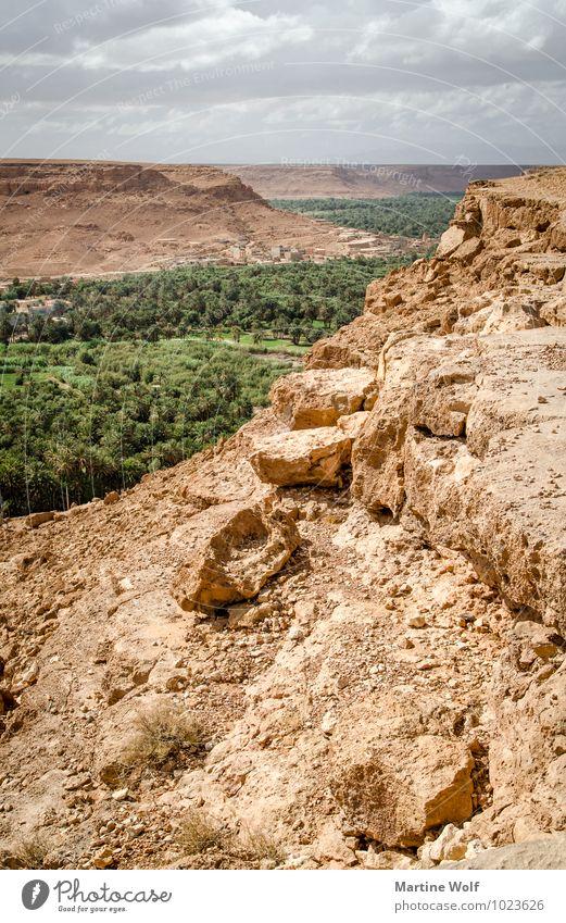 Vallée du Ziz 2 Natur Landschaft Erde Wasser Wolken Berge u. Gebirge Atlas Schlucht Oase Marokko Afrika Ferne Ziz-Tal Farbfoto Außenaufnahme Menschenleer Tag
