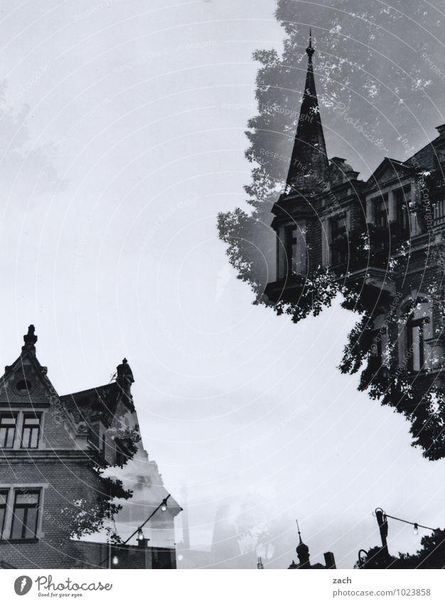 geteilter Himmel Stadt alt weiß Baum Haus schwarz Fenster Architektur Fassade träumen Häusliches Leben elegant historisch Burg oder Schloss Bauwerk Balkon