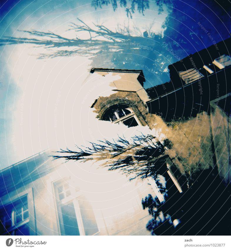 Traumhaus Häusliches Leben Renovieren Pflanze Baum Sträucher Ast Burg oder Schloss Mauer Wand Fassade Fenster Dach dreckig fantastisch blau träumen Abenteuer