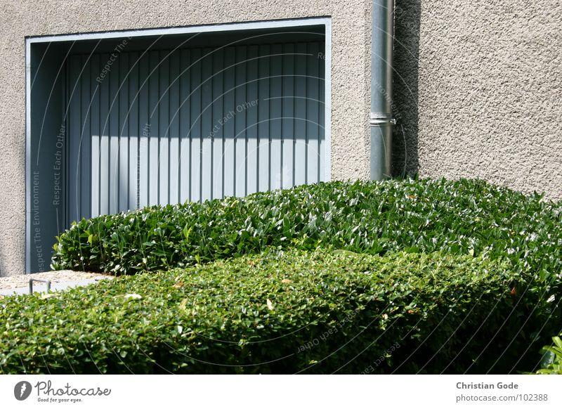 Akkurat Garage Tor Hecke Fallrohr Mauer grün blau Einfamilienhaus Vorgarten KFZ Heckenschere Gärtner Architektur Gut geschnitten