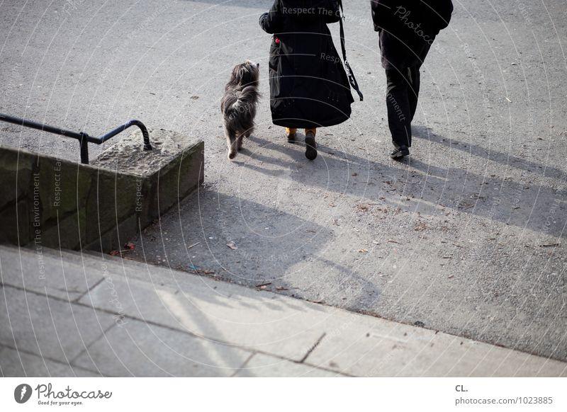 treppe runter, links Mensch Frau Erwachsene Mann Paar Partner Leben 2 Herbst Winter Schönes Wetter Mauer Wand Treppe Geländer Fußgänger Straße Wege & Pfade