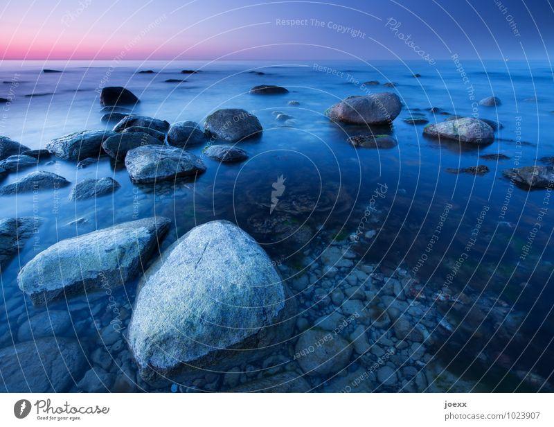 Stoned Wasser Wolkenloser Himmel Horizont Küste Ostsee Stein schön blau grau violett Farbfoto Außenaufnahme Menschenleer Morgen Morgendämmerung Licht