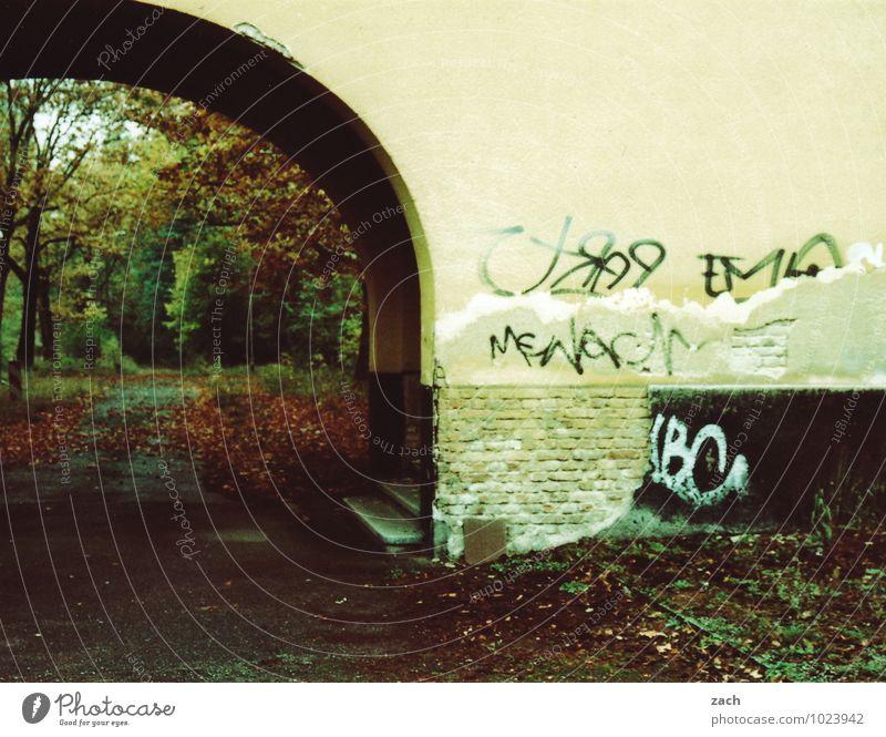 Durchfahrt Pflanze Baum Blatt Haus Winter Wald Wand Straße Traurigkeit Graffiti Herbst Wege & Pfade Mauer braun Fassade Park