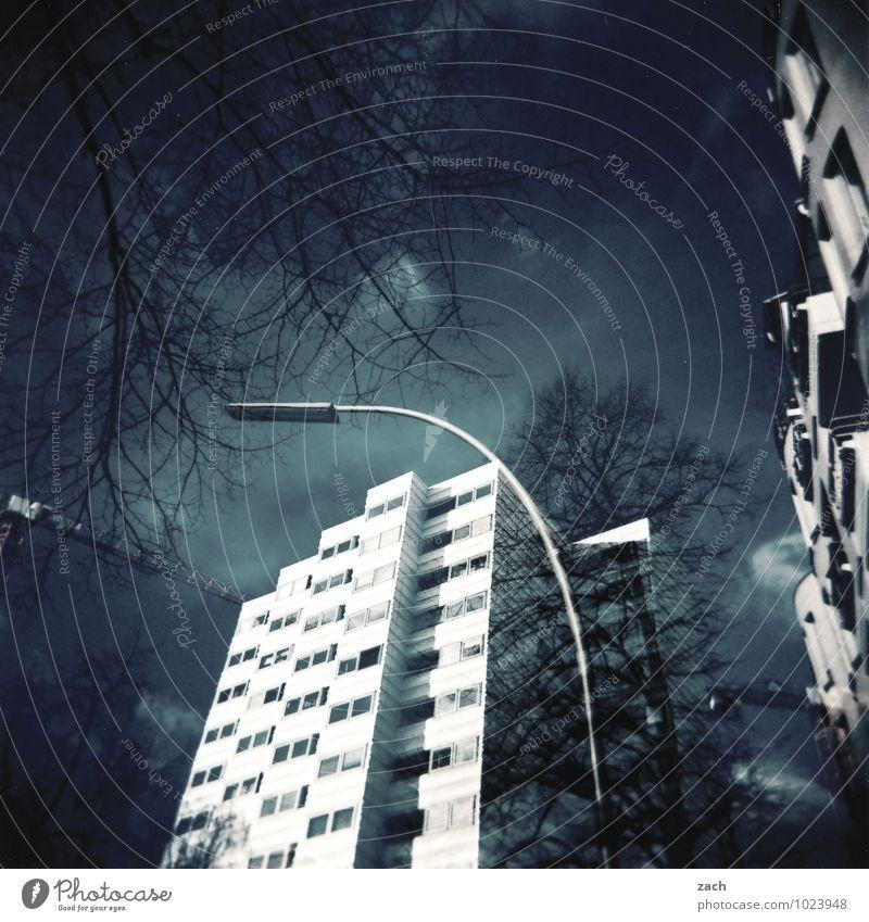 Vorstadt BlueS Städtereise Häusliches Leben Pflanze Baum Berlin Stadt Hauptstadt Stadtrand überbevölkert Haus Hochhaus Gebäude Architektur Mauer Wand Fassade