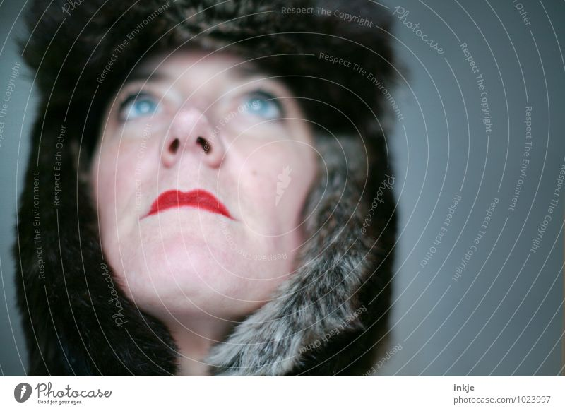 Eiszeit Lippenstift Frau Erwachsene Leben Gesicht 1 Mensch 30-45 Jahre Fell Mütze Blick träumen außergewöhnlich kalt Wärme feminin weich blau rot Gefühle