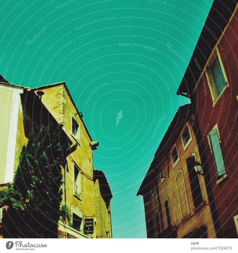 Avignon Städtereise Häusliches Leben Wohnung Haus Wolkenloser Himmel Pflanze Baum Frankreich Provence Stadtzentrum Altstadt Mauer Wand Fassade Fenster Gasse