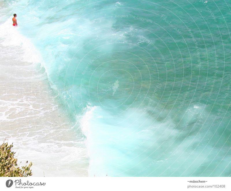 Wellentraum Meer Griechenland Mann Baum türkis zügellos Ferien & Urlaub & Reisen Erholung springen stehen Sommer Wasser wave Kuba Mittelmeer boy men blau Freude