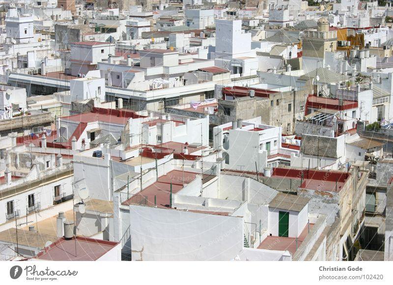 Über den Dächern von Cadiz weiß Stadt rot Sommer Ferien & Urlaub & Reisen Wärme Architektur Tourismus Aussicht Dach Turm Afrika Physik Spanien Tourist Wäsche