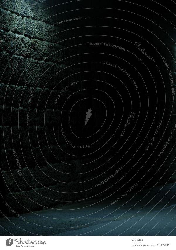 das licht in der mitte des tunnels blau schwarz Einsamkeit Straße Lampe dunkel Mauer Angst gefährlich bedrohlich Tunnel Panik