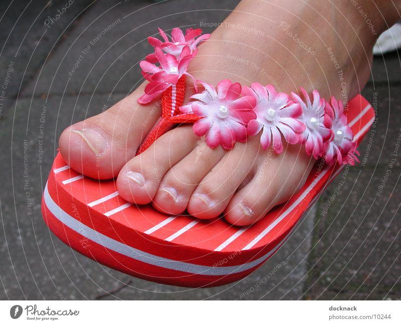Hipp Flopps Sommer Fuß Schuhe Zehen Flipflops Fototechnik