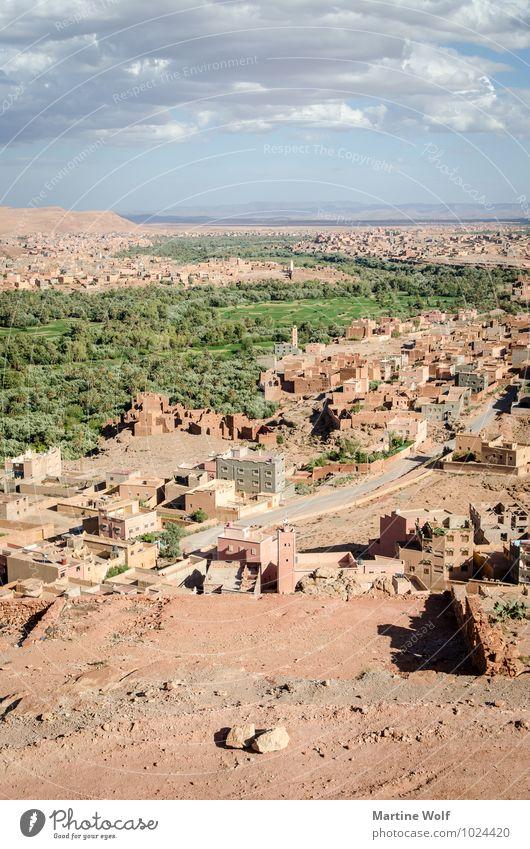 das große Tal Natur Ferien & Urlaub & Reisen Landschaft Ferne Berge u. Gebirge Idylle Wüste Afrika Schlucht Oase Marokko Atlas Todra Tal