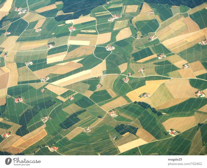 die welt von oben Luftaufnahme Wiese Vogelperspektive Feld Flugzeug Bauernhof Teppich