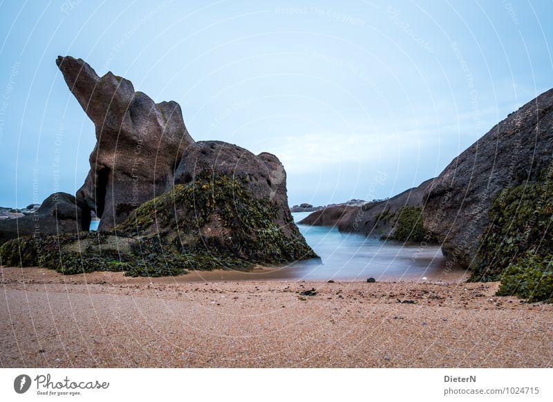 Gebilde Umwelt Landschaft Urelemente Sand Luft Wasser Himmel Küste Meer Atlantik Ploumanach Frankreich Europa Menschenleer blau braun schwarz Strand Felsen