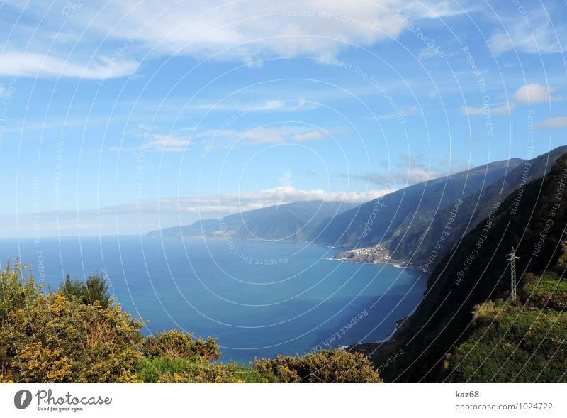 Madeira Himmel Natur Ferien & Urlaub & Reisen blau Pflanze Sommer Wasser Sonne Meer Landschaft ruhig Tier Strand Schwimmen & Baden Felsen Horizont