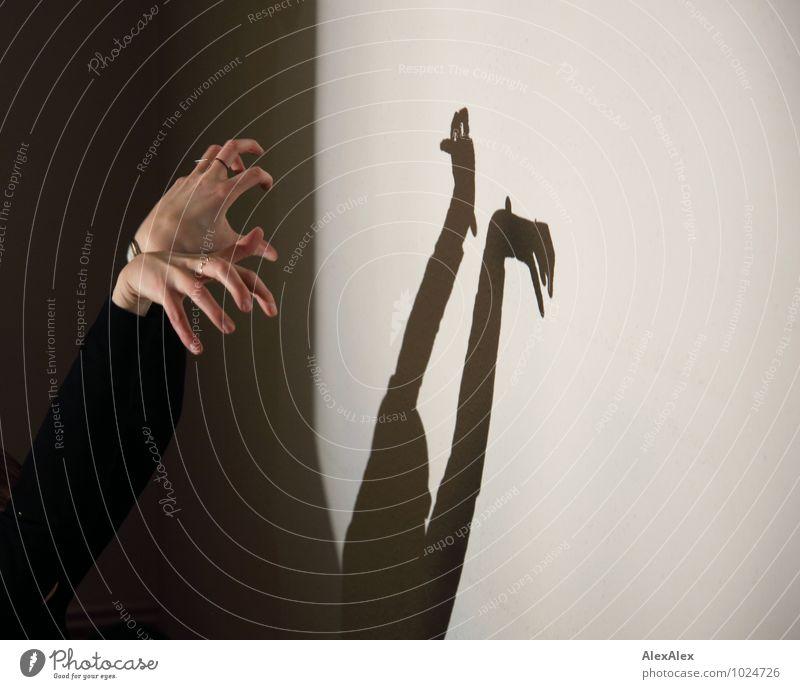 dynamischer Rorschachtest Hand Schattenspiel Figur Fotografie Silhouette beobachten leuchten Spielen ästhetisch authentisch Zusammensein gruselig hell retro