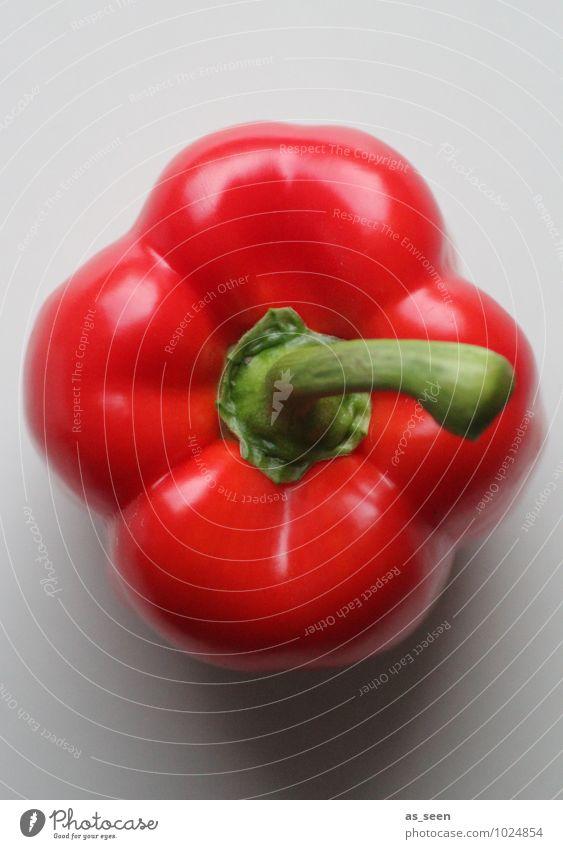 Paprika ornamental Natur Pflanze Farbe rot Umwelt Leben Gesundheit Essen Lebensmittel glänzend frisch Energie Ernährung genießen Kochen & Garen & Backen Küche