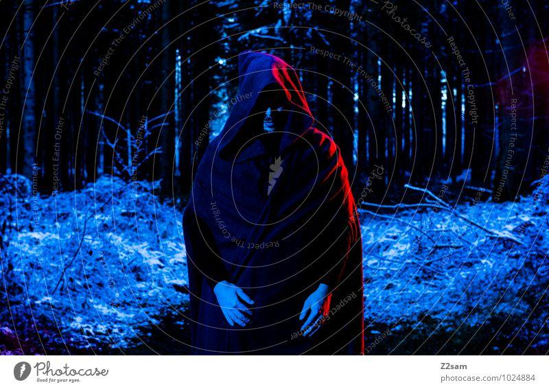 Dark Night maskulin Junger Mann Jugendliche Natur Landschaft Herbst Eis Frost Schnee Baum Sträucher Wald Mantel Kapuze stehen dunkel gruselig kalt rebellisch