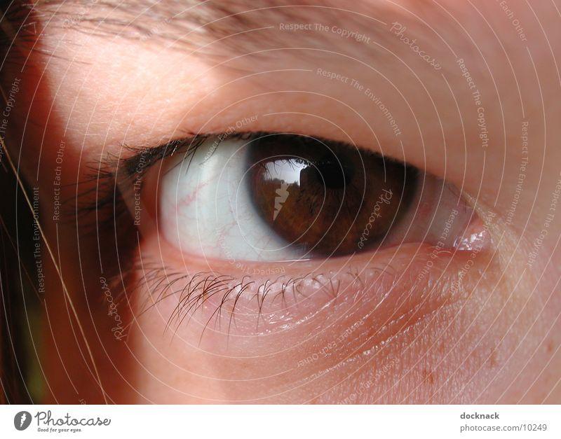 Auge mit Kontaktlinse Makroaufnahme Mensch Blick