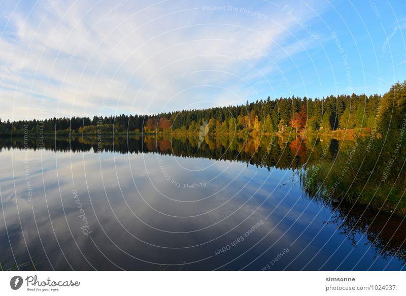stiller See Natur Wasser Wolken Herbst Nebel Wald Teich Stimmung Fichtelsee Jahreszeiten Fichtelgebirge Bayern Herbstwald Schleier Hintergrundbild Morgen