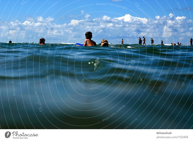 shark attack Meer Strand Mensch Sommer Ebbe Frankreich Seignosse Atlantik Haifisch Küste Wasser Schwimmen & Baden Sea Shark beobachten