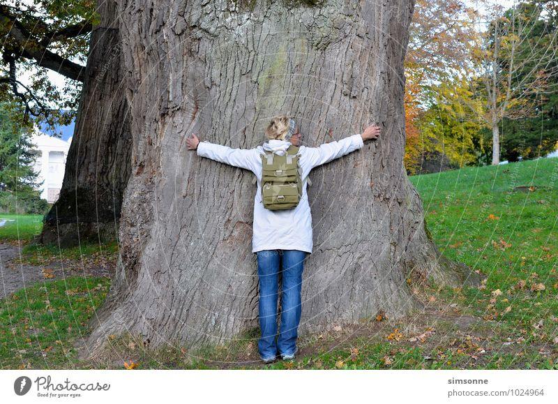 Eine Frau umarmt einen uralten Baum Umwelt Natur Pflanze Urelemente Umarmen natürlich blau Farbfoto Tag