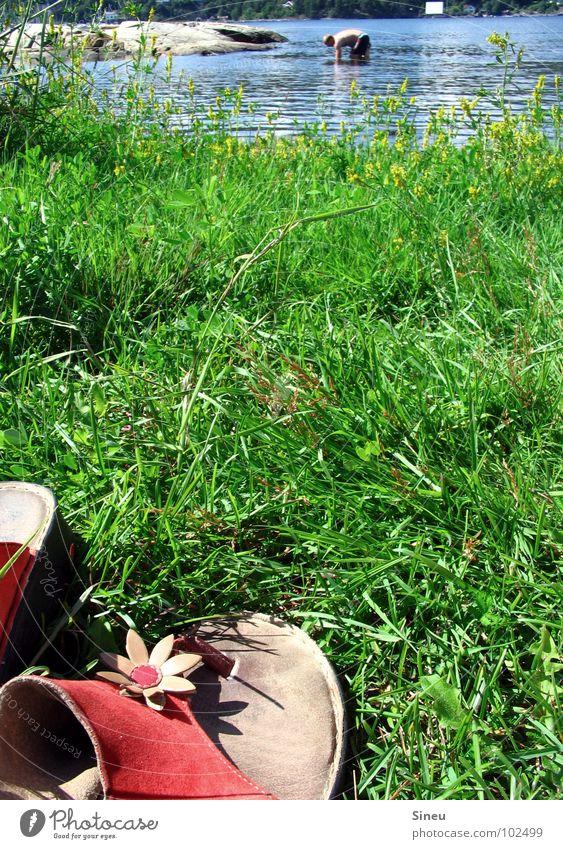 Käsefüße auf Wanderschaft Mensch Natur Blume Sommer Freude Erholung Gras See Schuhe Rasen Fluss Schwimmen & Baden Schönes Wetter Bach Norwegen