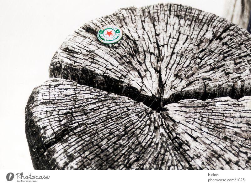 hölzern Holz Holzbrett Buhne