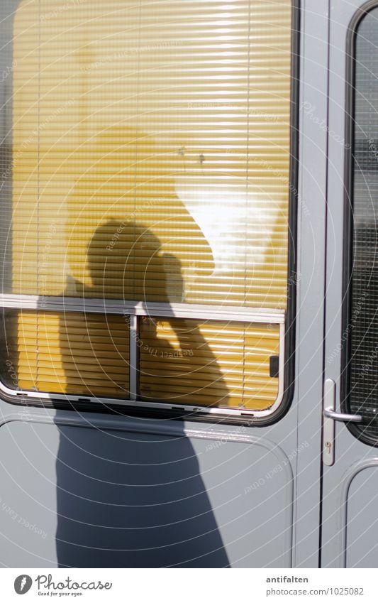 C/L at work Mensch Mann Freude Fenster gelb Erwachsene Wärme Leben grau Lifestyle maskulin Freizeit & Hobby Tür Körper Arme beobachten