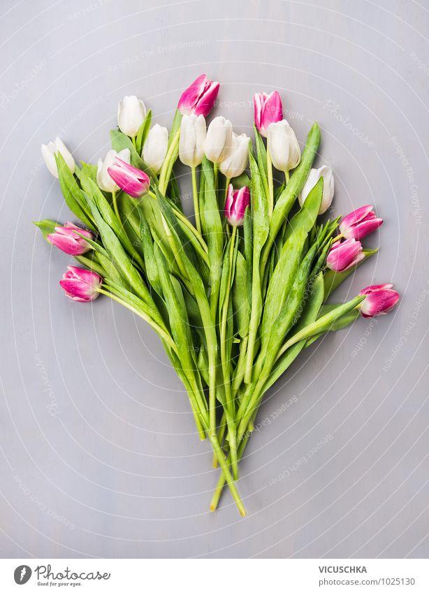 Tulpen Blumenstrauß Stil Design Sommer Feste & Feiern Valentinstag Muttertag Hochzeit Geburtstag Natur Pflanze Frühling Liebe rosa arrangiert weiß grau grün
