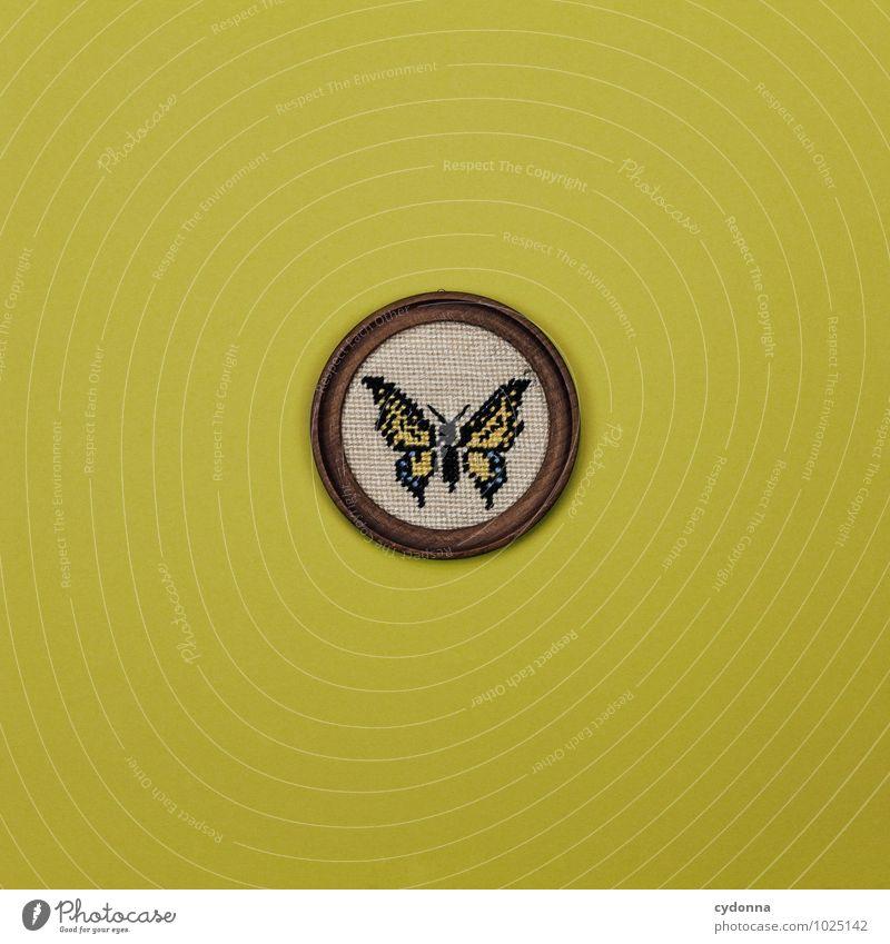 Detailverliebt Natur schön Farbe gelb träumen Freizeit & Hobby Design Häusliches Leben Dekoration & Verzierung ästhetisch Kreativität Vergänglichkeit Idee