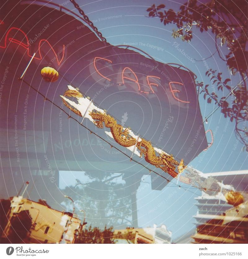 Café An Stadt blau Pflanze Baum Haus Essen Dekoration & Verzierung Schilder & Markierungen Schriftzeichen Zeichen trinken Kitsch Asien Stadtzentrum exotisch