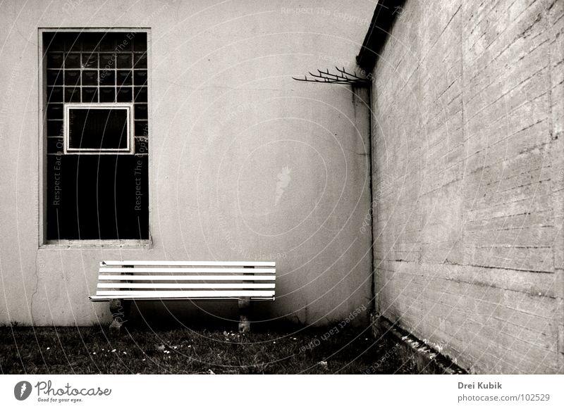 Backyard Seat Wiese Wand Garten Mauer Park Bank Hinterhof Zerbrochenes Fenster
