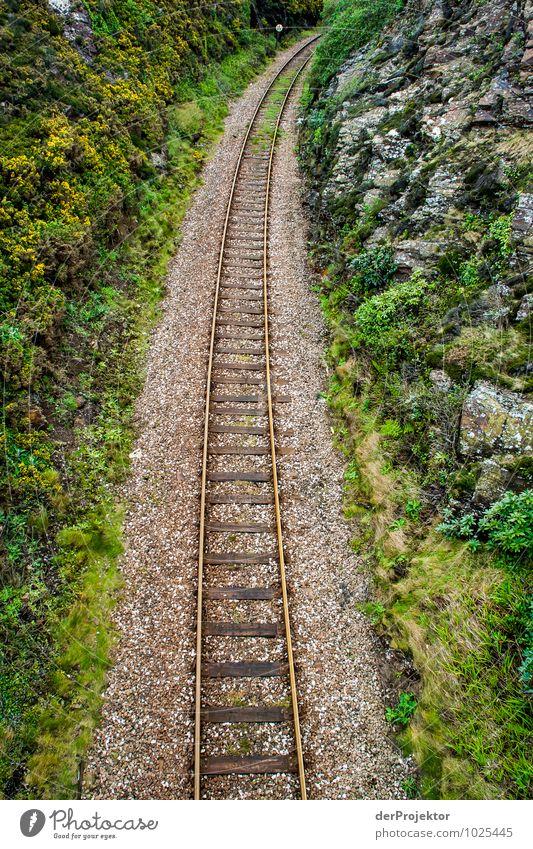 Schiene, Schotter, Moos Natur Pflanze Landschaft Umwelt Gefühle Felsen Verkehr Insel Eisenbahn Urelemente Hügel Ziel Verkehrswege Personenverkehr Optimismus