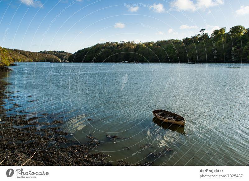 Ein Boot, ein Meeresarm Ferien & Urlaub & Reisen Tourismus Freiheit Umwelt Natur Landschaft Pflanze Urelemente Frühling Urwald Wellen Küste Seeufer Flussufer