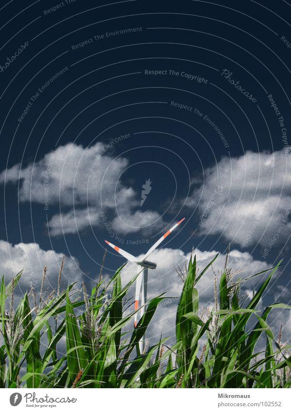 Windrad grün rot Wolken dunkel Umwelt Feld Energiewirtschaft Klima Elektrizität Industrie Windkraftanlage Rad Klimawandel Mais