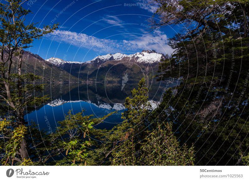 kristallklarer See in Patagonien Himmel Natur Ferien & Urlaub & Reisen Pflanze Sommer Sonne Erholung Einsamkeit Landschaft Wald Berge u. Gebirge Leben Frühling