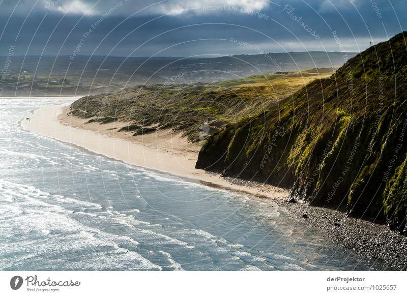 Schöner hätte es man nicht malen können Natur Ferien & Urlaub & Reisen Pflanze Meer Landschaft Tier Ferne Strand Berge u. Gebirge Umwelt Frühling Gefühle Wiese Küste Freiheit Tourismus