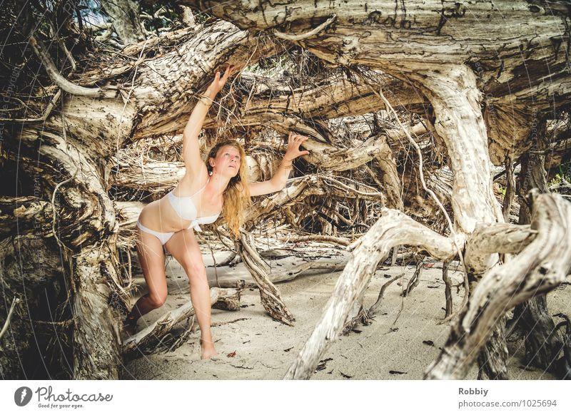 Labyrinthe de racines feminin Junge Frau Jugendliche Erwachsene 1 Mensch 13-18 Jahre Kind 18-30 Jahre Sommer Baum Wurzel Wurzelholz Urwald Strand Bikini Blick