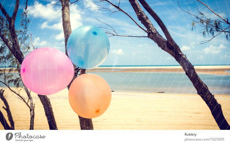 Célébration sur la plage Natur Landschaft Wasser Sommer Baum Seeufer Meer Pazifikstrand Strand Dekoration & Verzierung Luftballon Sand Freundlichkeit maritim