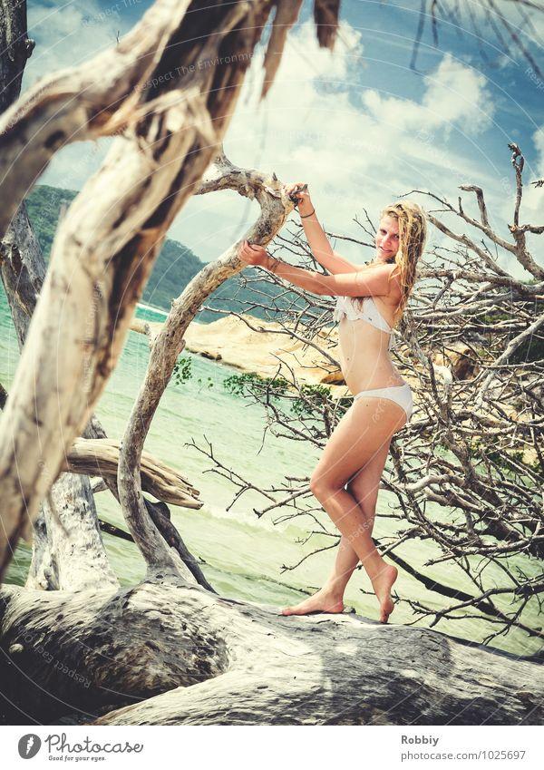 Perle de la plage I feminin Junge Frau Jugendliche Erwachsene 1 Mensch 13-18 Jahre Kind 18-30 Jahre Natur Landschaft Baum Wurzel Ast Mangrove Seeufer Strand