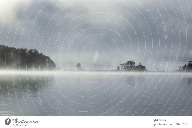 Winterwonderland Himmel Natur Pflanze schön Wasser Landschaft Erotik Umwelt Küste natürlich Frühling Horizont glänzend Wetter Nebel Wellen