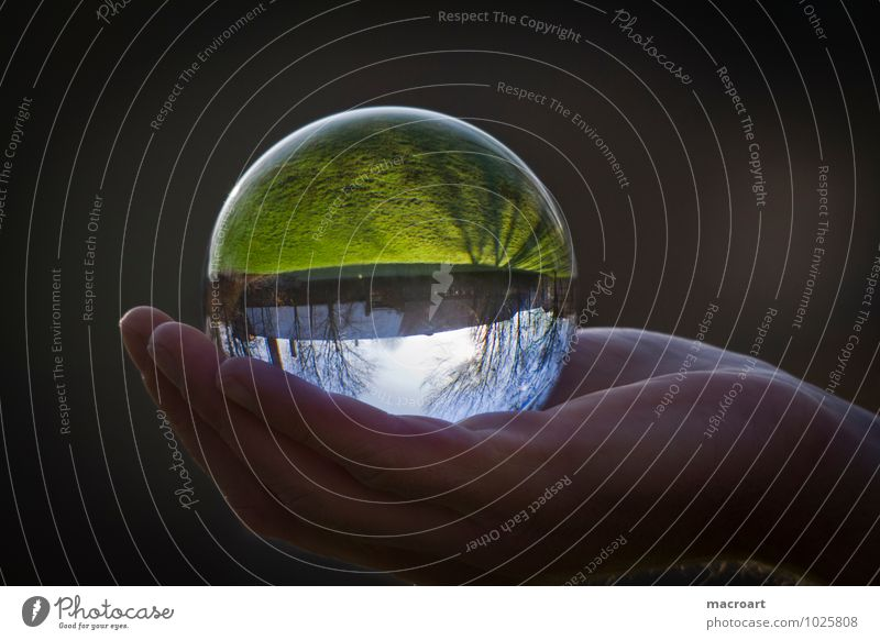 Gläserne Welt Glaskugel Natur Gras Wiese Erde Kristalle Ball durchsichtig natürlich Reflexion & Spiegelung Spiegelbild Hand festhalten Mann Himmel Baum