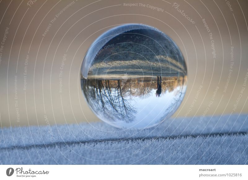 Gläserne Welt Winter Natur Erde Gras Wiese Glas Wasser frieren kalt blau ruhig Ferne Glaskugel eis schnee Frost Eiskristall gefroren ball durchsichtig natürlich