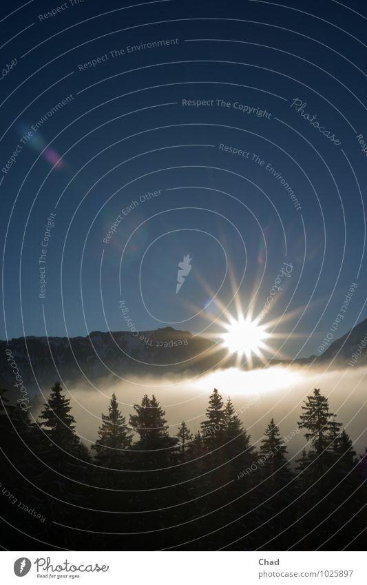 Wolken Sonne 2 Himmel Natur Ferien & Urlaub & Reisen Pflanze blau weiß Baum Erholung Landschaft Einsamkeit ruhig Winter Berge u. Gebirge kalt Schnee