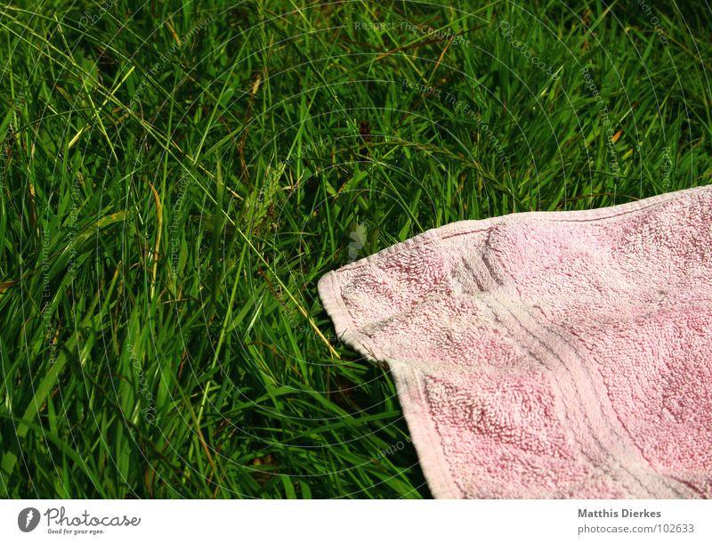 ROSA HANDTUCH grün Sommer Freude Strand Ferien & Urlaub & Reisen kalt Erholung Wiese Spielen Gras Freiheit See Wärme Zufriedenheit Stimmung hell