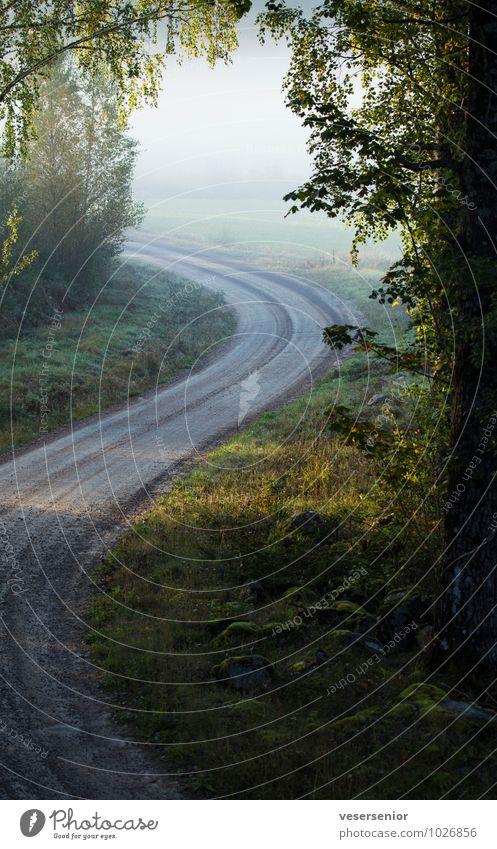 road to boda Landschaft Straße Schotterstraße ruhig Neugier Hoffnung Glaube entdecken Idylle Stimmung Wege & Pfade Werbung Ziel Zukunft Farbfoto Außenaufnahme
