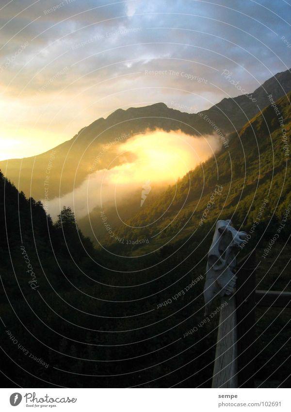 Morgen Grauen Stimmung Romantik Wald Wolken Nebel Berge u. Gebirge Natur Alpen Abend Tal Himmel Pyrenäen Schädel Traurigkeit Außenaufnahme