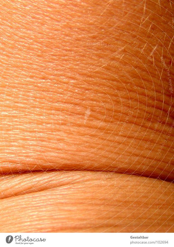 Hautsache. Gelenk Hautfarbe Dermatologie Anatomie gestaltbar Makroaufnahme Nahaufnahme Gesundheit Falte Strukturen & Formen verrenken Verrenkung Hautkunde